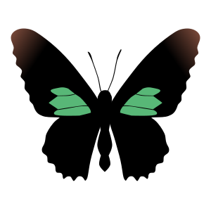 Amazing Butterfly Sticker