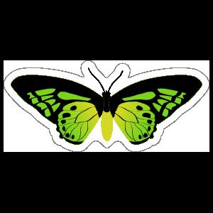 Amazing Green Butterfly Sticker