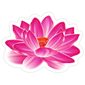 Amazing Pink Lotus Flower Sticker