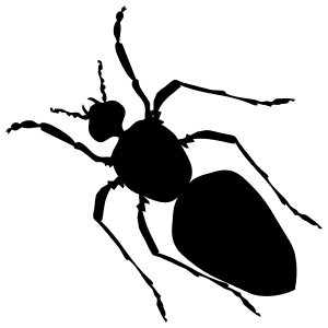 Ant Sticker
