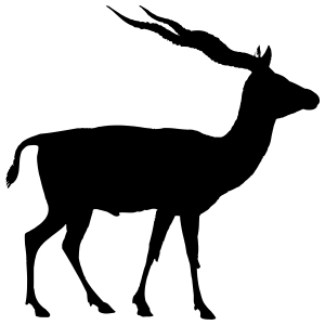 Antelope With Large Wavy Antlers Sticker