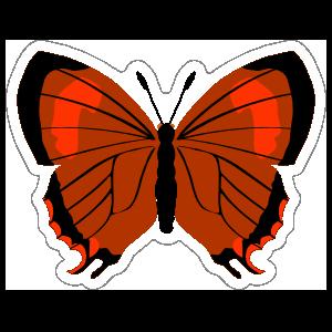Deep Orange Butterfly Sticker
