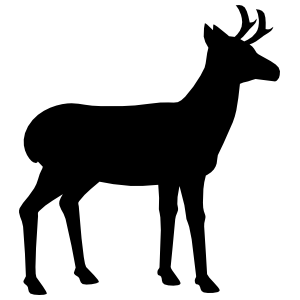 Antelope With Small Antlers Facing Right Sticker