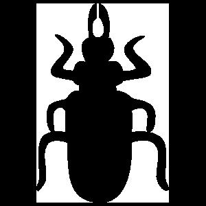 Egyptian Beetle Sticker