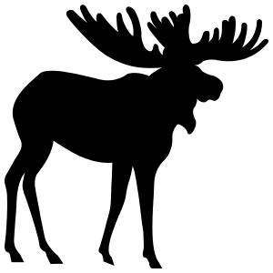 Moose With Big Antlers Sticker