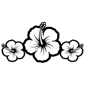Three Hibiscus Flowers Border Sticker
