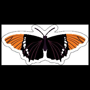 Beautiful Orange and Black Butterfly Sticker