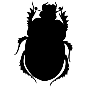 Pointy Beetle Sticker