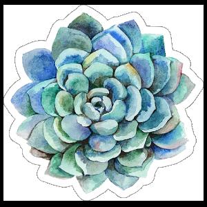 Blue Watercolor Succulent Sticker