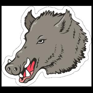 Boar Head Mascot Sticker
