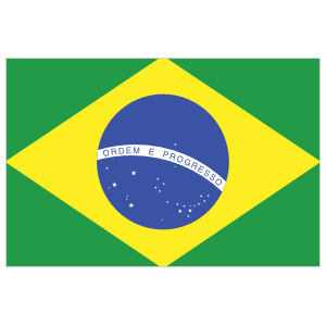 Brazil Flag Sticker