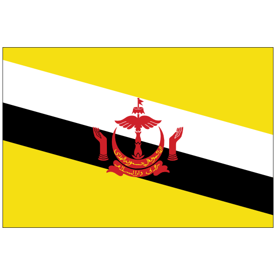 Brunei Country Flag Magnet