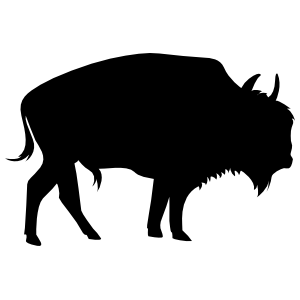 Buffalo Sticker