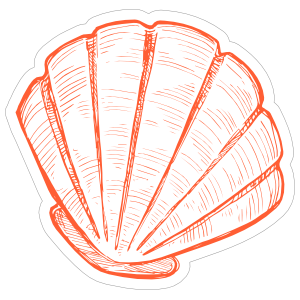 Orange Hand Drawn Scallop Sticker