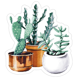 Cactus and Succulent Trio Sticker