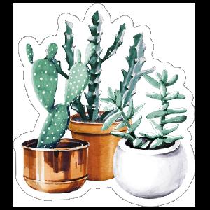 Cactus and Succulent Trio Sticker