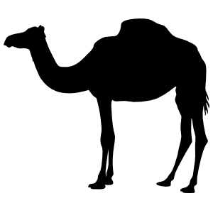 Furry Camel Standing Sticker