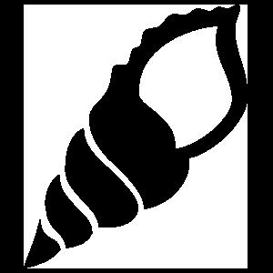 Turitella Seashell Sticker