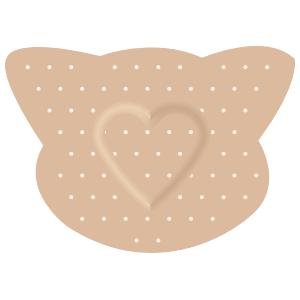 Pig Band Aid Bandage Magnet