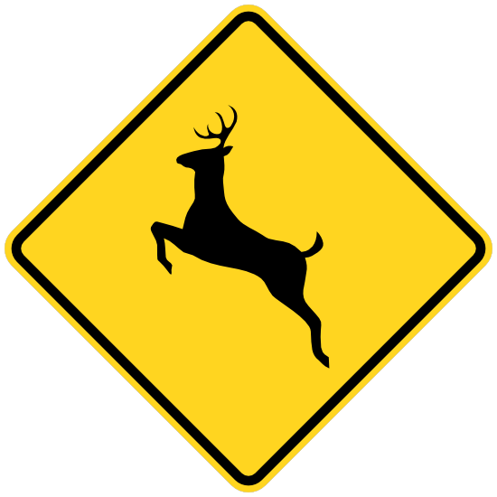 Watch Out For Deer Sticker