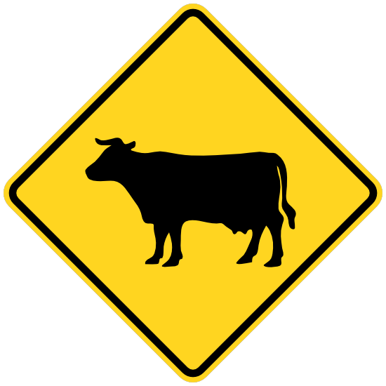 Warning Cows Sticker