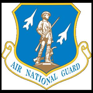 Air Force Air National Guard Shield Sticker