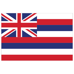 Hawaii Hi State Flag Magnet