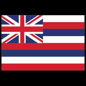 Hawaii Hi State Flag Sticker