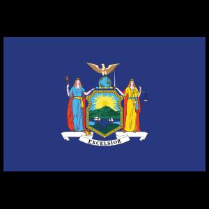New York Ny State Flag Magnet