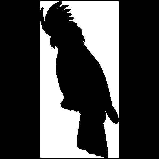 Cockatoo Sticker