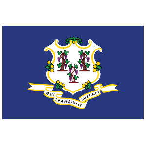 Connecticut Ct State Flag Magnet