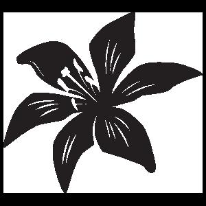 Cool Lily Flower Sticker