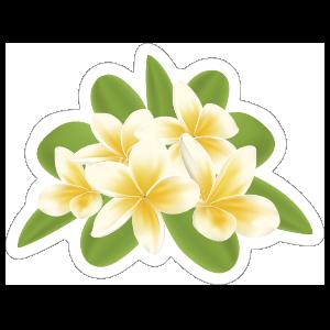 Cool Plumeria Flower Sticker