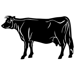Detailed Cow Sticker
