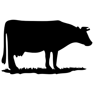 Cow Grazing Sticker