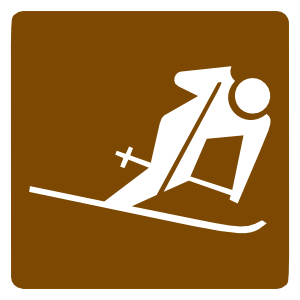 Downhill Skiing Sticker