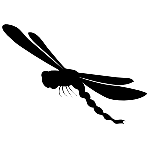Dragonfly With Long Tail Flying Sticker