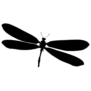Authentic Dragonfly Sticker