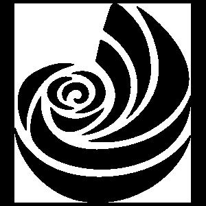 Kappa Delta Shell Transfer Sticker