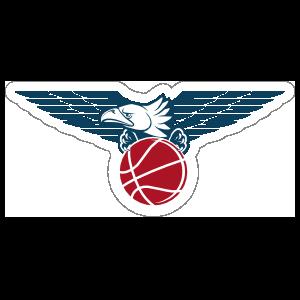 Image result for eagle basketball