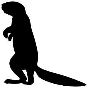 Ferret Standing Sticker