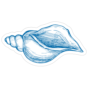 Blue Hand Drawn Drill Shell Sticker