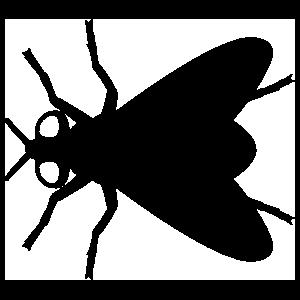 Triangular Fly Sticker
