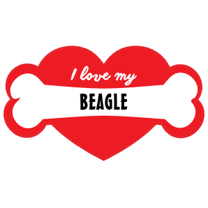 Handwritten I Love My Beagle with Bone and Heart Magnet