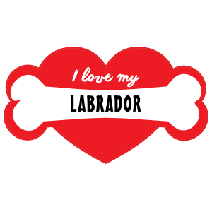 Handwritten I Love My Labrador with Bone and Heart Magnet