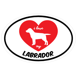 Handwritten I Love My Labrador with Heart Oval Magnet
