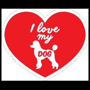 Handwritten I Love My Poodle Heart Magnet