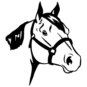Quarter Horse Head Sticker