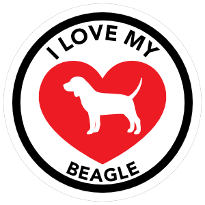 I Love My Beagle With Big Heart Circle Magnet