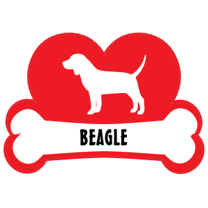I Love My Beagle with Dog Bone and Heart Magnet